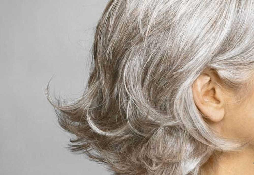 Ankstyva žilė - senatvė ar šlovės vainikas