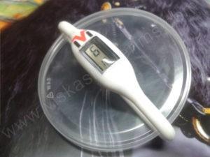 Elektroninis laikrodis silikonine apyranke (baltos spalvos)