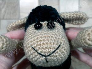 Nerta kreminė avytė ilgom kojom su juoda galva ir kūnu - 06