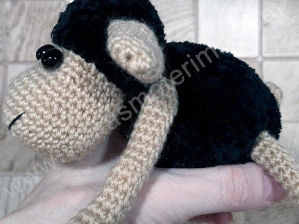 Nerta kreminė avytė ilgom kojom su juoda galva ir kūnu - 07